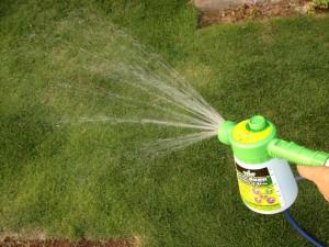 芝生にキトサン溶液を散布